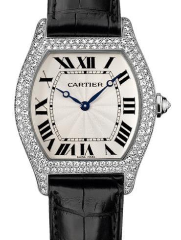 卡地亚TORTUE系列WA503851银色表盘