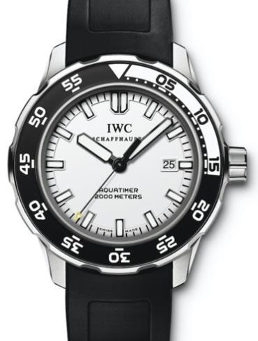 万国海洋系列IW356806黑色表带