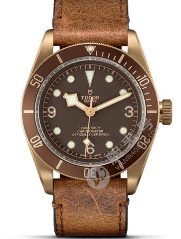 帝舵碧湾青铜型79250bm-0001棕色表底盖